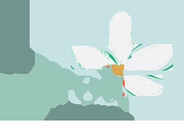 The Neroli Room Logo
